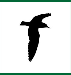 Flying seagull bird black silhouette isolated on vector