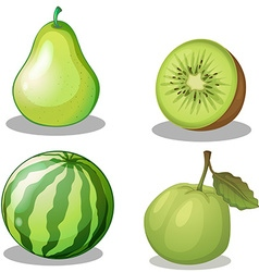 Fresh fruits in green vector