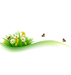 Summer nature background with grass flowers and vector