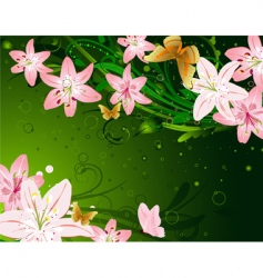 floral lily vector image vector image