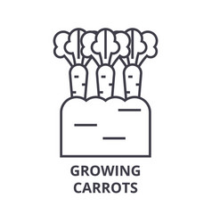 growing carrots line icon outline sign linear vector image