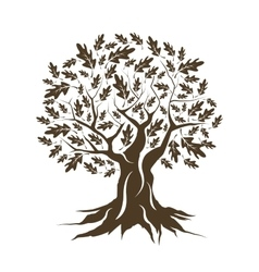 Beautiful brown oak tree silhouette isolated vector image