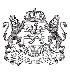Coat of arms netherlands vintage vector