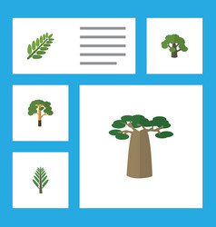 Flat icon nature set of baobab wood leaves and vector