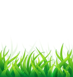 Natural background vector image vector image