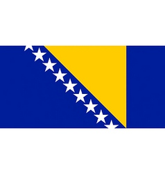 Bosnian and herzegovinian flag vector
