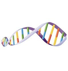 DNA helix vector image vector image