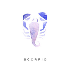 Scorpion zodiac sign part of zodiacal system vector