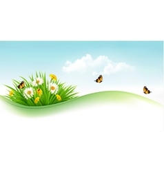 Summer background with grass flowers and vector