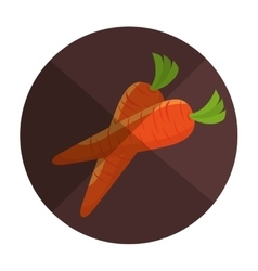 Carrot fresh farm product vector