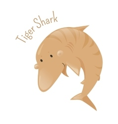 Tiger shark isolated cartoon character vector