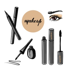 woman eye and makeup vector image vector image