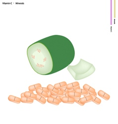 Green wax gourd with vitamin c and minerals vector