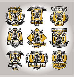 set of colorful logos emblems of a knight on a vector image vector image