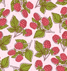 Raspberry pattern vector image