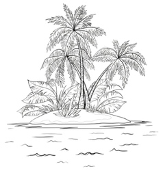 Island with palm contours vector