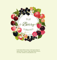 Berry vertical banner vector image