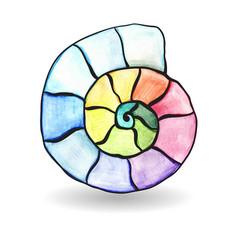Watercolor shell vector