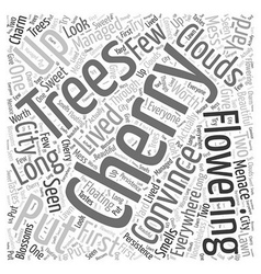 Flowering cherry trees word cloud concept vector
