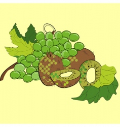 grapes and kiwi vector image vector image