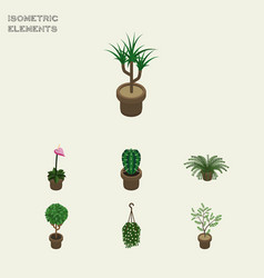 Isometric houseplant set of fern peyote blossom vector