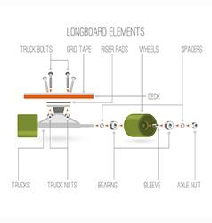 Longboard elements infographic vector