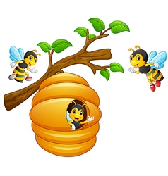 The bees fly out of a beehive hanging from a tree vector