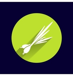 Isolated young green onions and leeks vector
