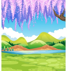 Nature scene with green field and willow tree vector