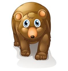 A brown bear vector