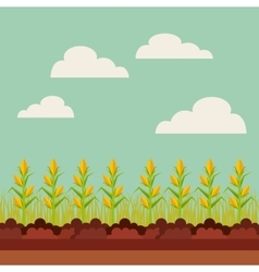 Fresh farm design vector