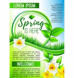 Spring poster greetings of blooming flowers vector