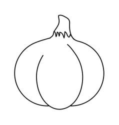 Spicy garlic vegetable vector