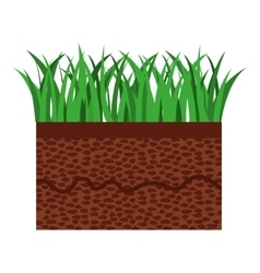 Grass and terrain isolated icon design vector