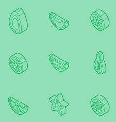 Fruit outline isometric set vector