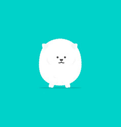 white pomeranian flat cartoon character vector image