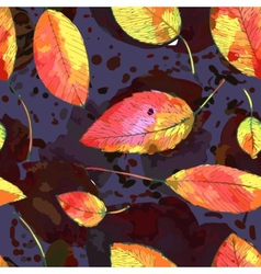 Autumn leaf background vector