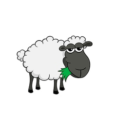 Cartoon of a cute sheep eating grass vector