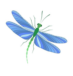 dragonfly in flight vector image vector image