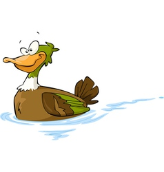 floating duck vector image vector image