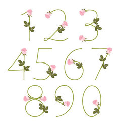 Floral alphabet Pink roses Numbers from 0 to 9 vector image