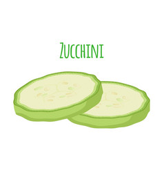 Fresh zucchini squash flat vector