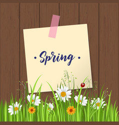 Spring banner with blooming chamomile vector