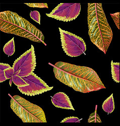 Tropial plants pattern vector