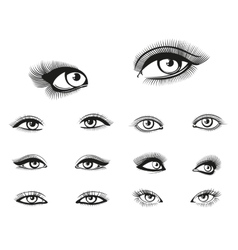 Woman eyes set vector