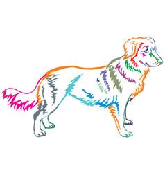 colorful decorative standing portrait of nova vector image