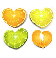 citrus heart shape vector image