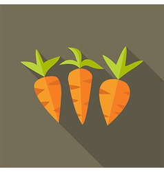 Natural spring carrots vector