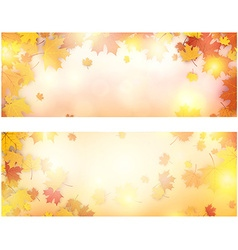 Autumn banner with maple leaves vector