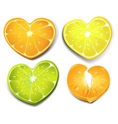 citrus heart shape vector image